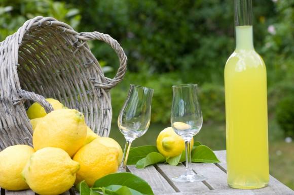 producten citroen