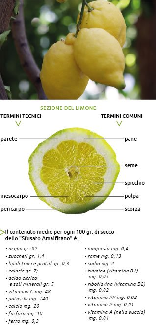 Sfusato Limone