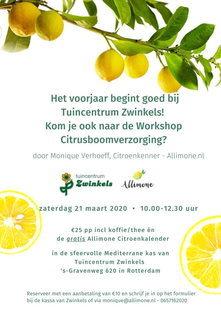 workshop Citrusboomverzorging Allimone